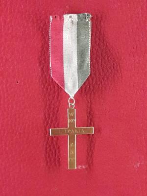 Tricolore Pin.jpg